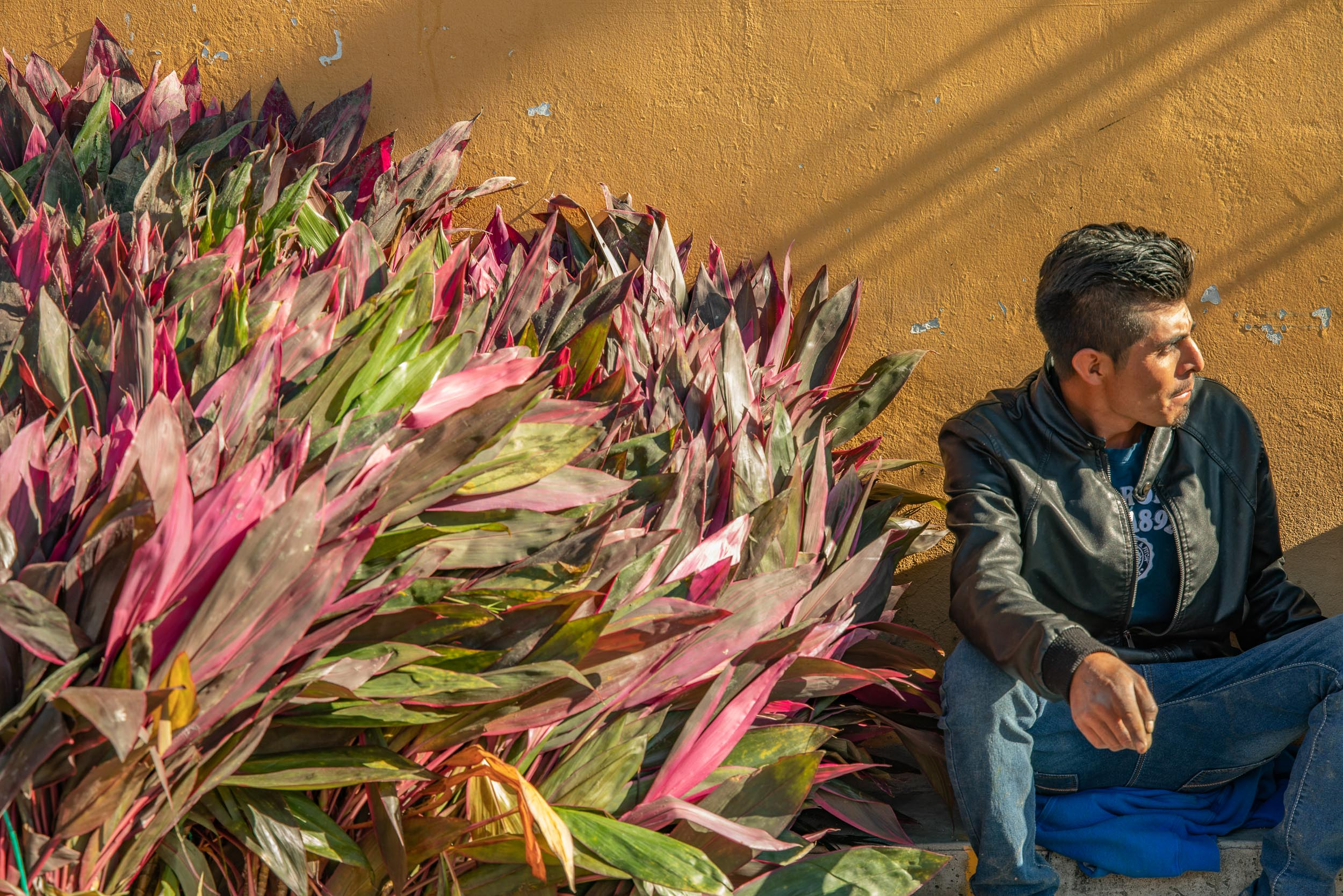 Mexico-Oaxaca-Teotitlan-Flower-Seller